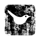 097738-twitter-bird3-square.png